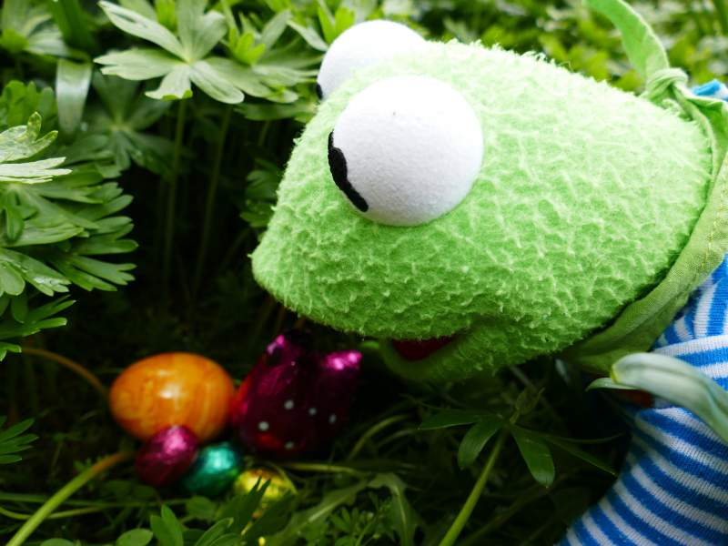 Funny Easter Pictures Kermit the Frog