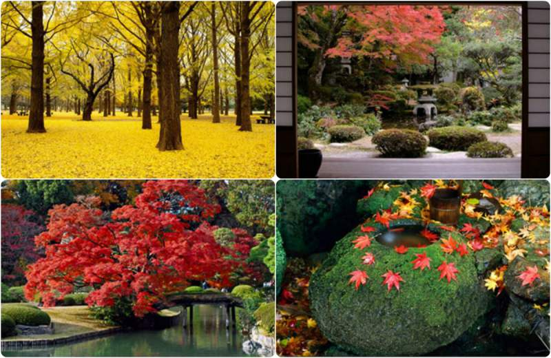 Change Windows 10 Design Autumn colors
