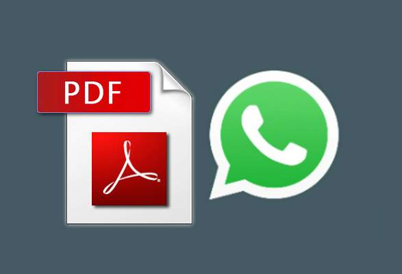 PDF via WhatsApp