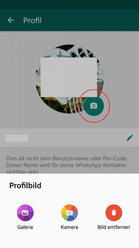 Select WhatsApp profile picture