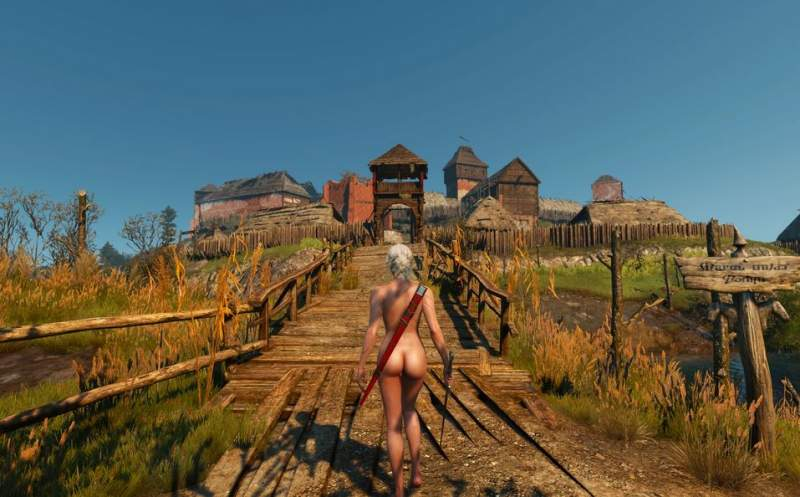 The Witcher 3: Naakt Mod Download Ciri